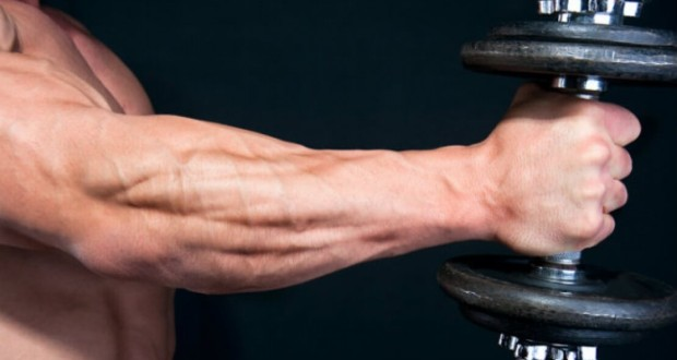 The Forearms Also Enhance Grip Strength And Thus Ist With Pulling Exercises On Stage Weak Forearm Development Is Readily Noticeable As A Result