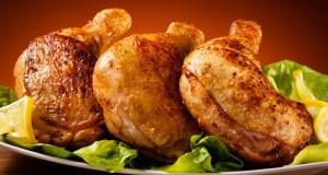 chicken-protein