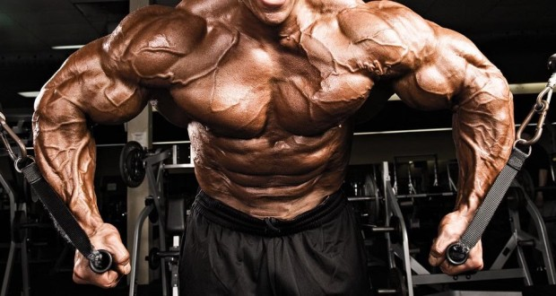 bodybuilding-secrets