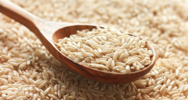 brown-rice-protein-supplement