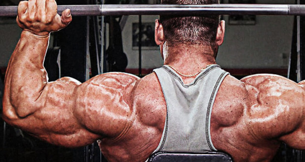 Back-Training-tips