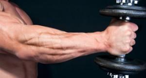 forearm-workout