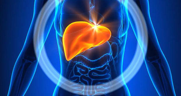 liver-protection-and-prohormones