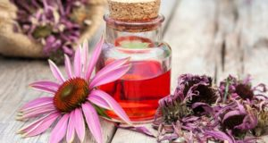 Echinacea-supplement