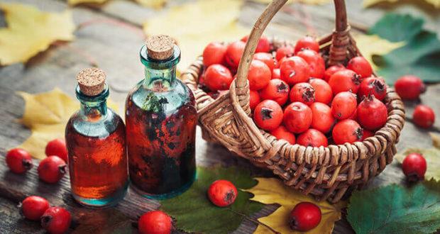 hawthorn-berry-supplement