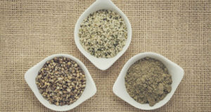 hemp-protein-supplements